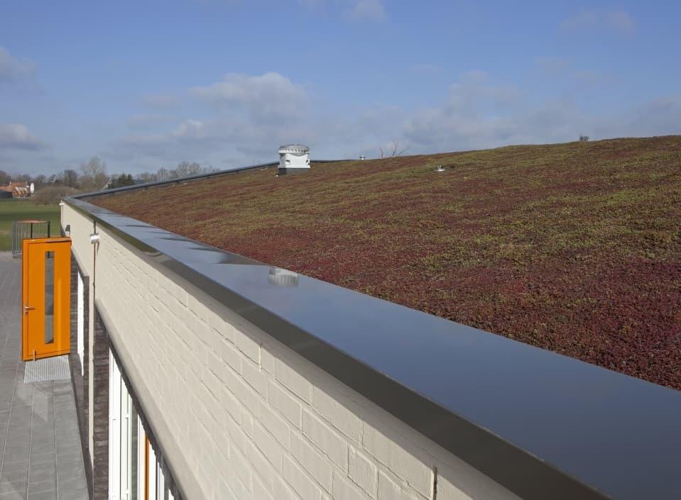 Klimaatbestendige en circulaire daken! Gratis live